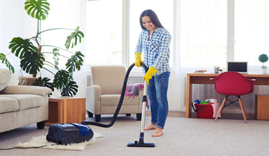 Why You Shouldn' t Vacuum Decoration Dust With Household Vacuum Cleaner