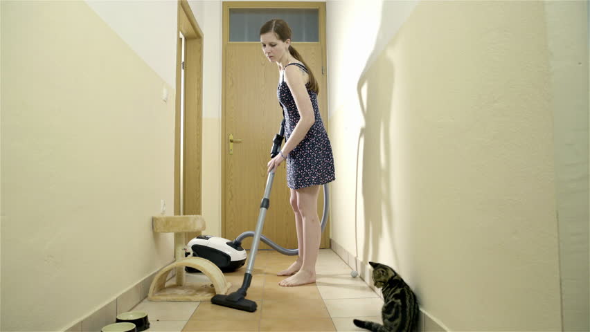 vacuuming the cat hair